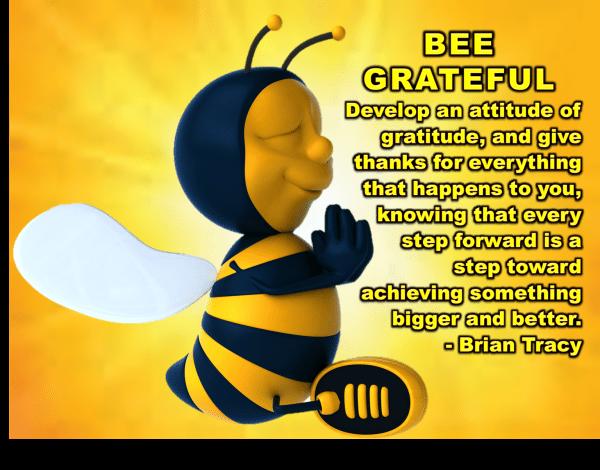 Gratitude - Bee grateful