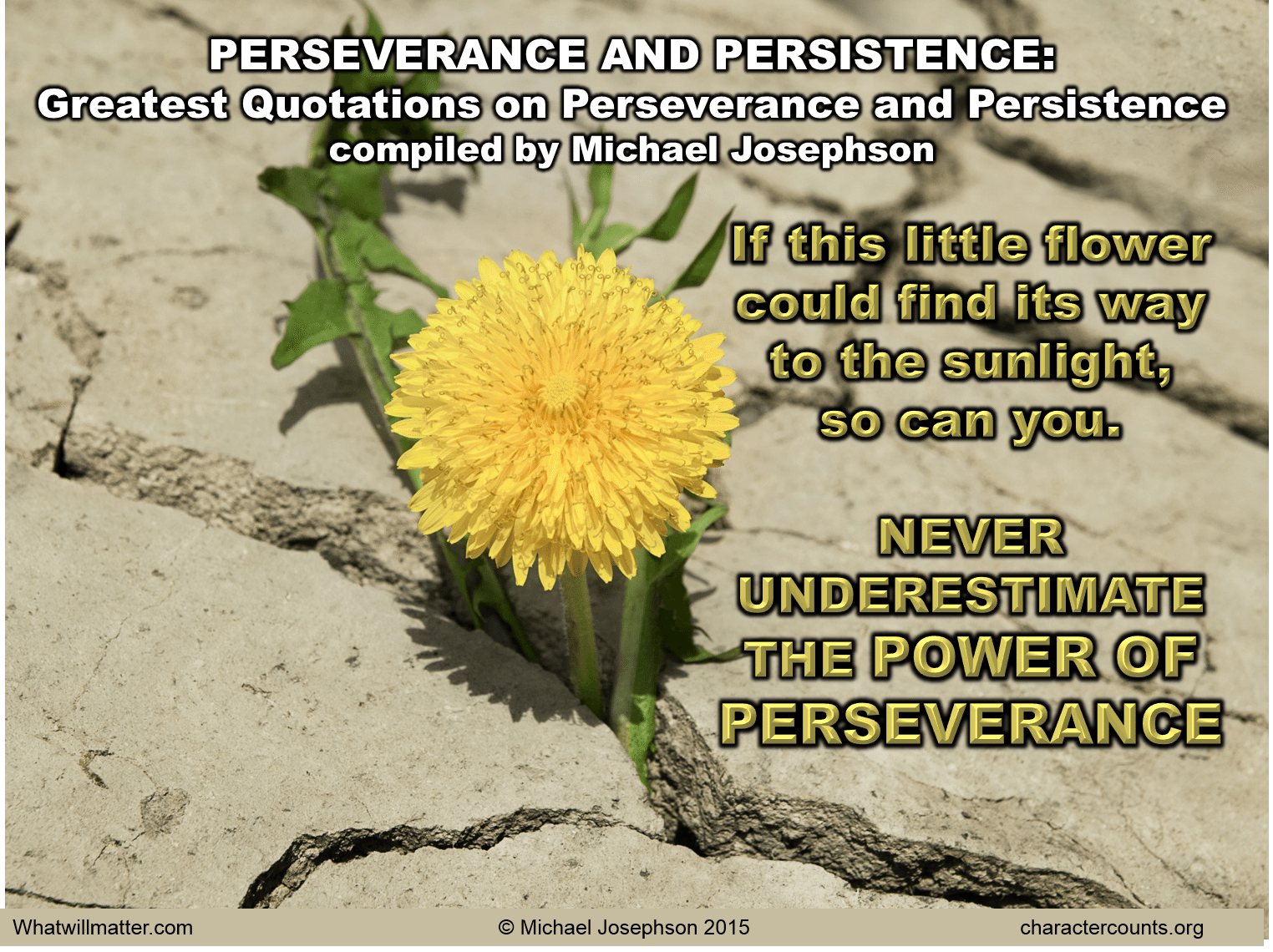 greatest quotations on perseverance and persistence what will matter