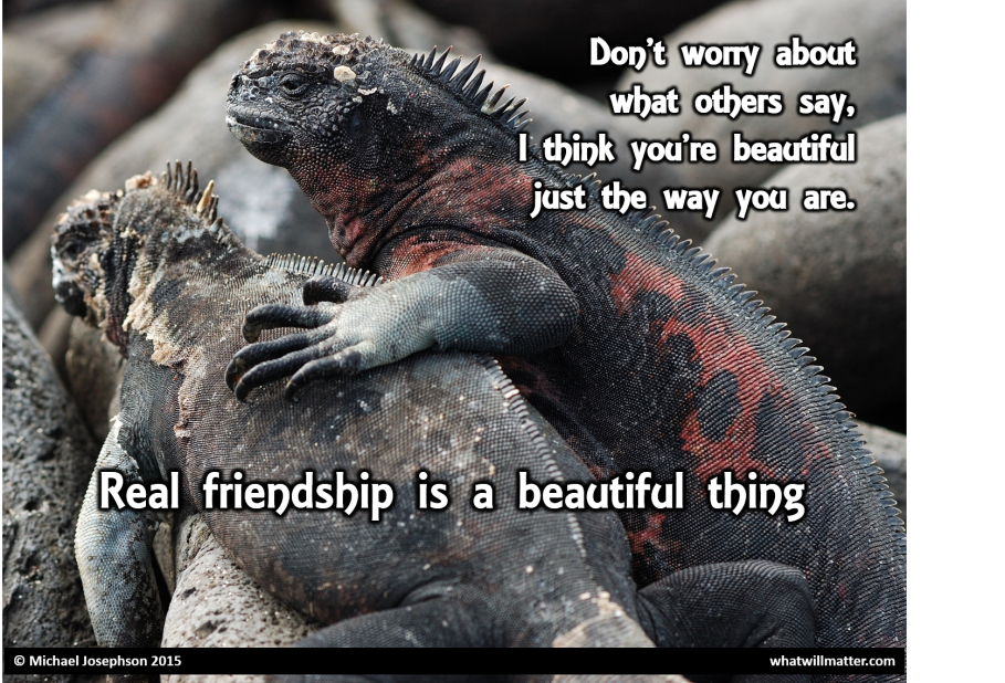 0 Friendship - beautiful as you are