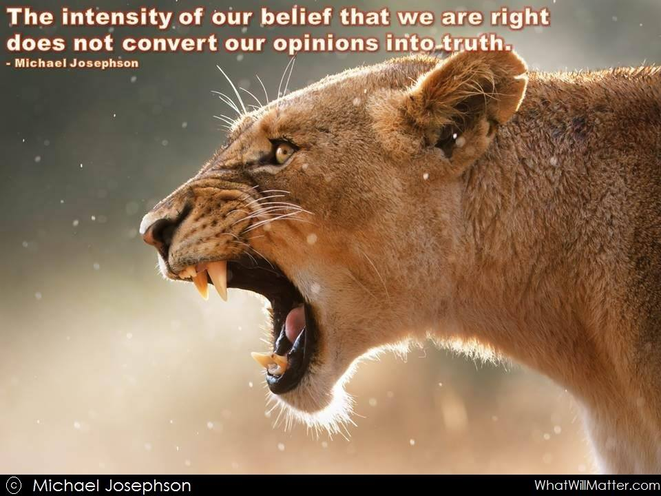 The intensity of our belief that we are right doesn't convert our opinions into truth. - Michael Josephson